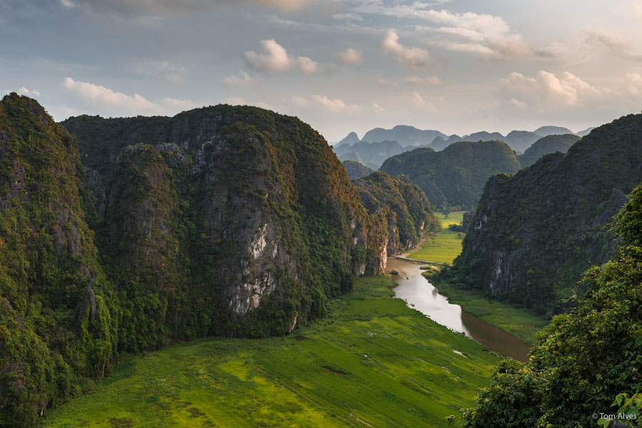 Tam Coc Vietnã arrozal