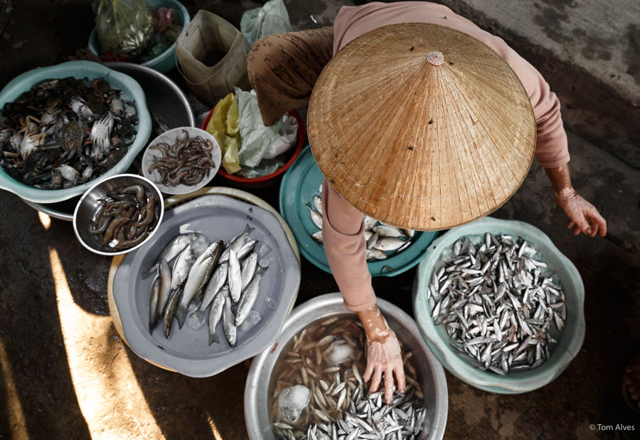 mercado vietnã peixes