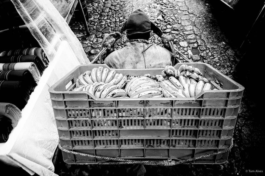 trabalhador guatemala